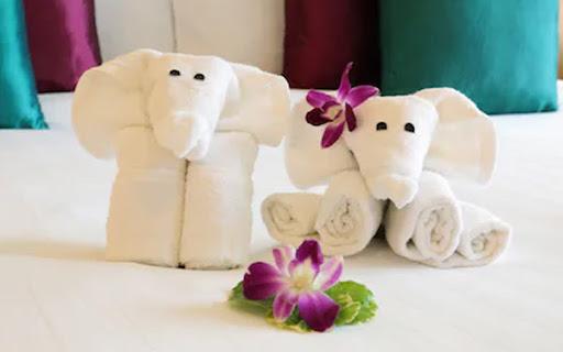Gấp khăn khách sạn tạo hình con voi đánh yêu