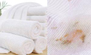 Làm sạch khăn mặt bị nhờn và cách khử trùng khăn mặt
