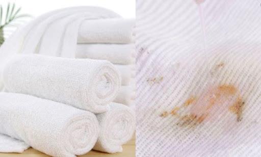 Sử dụng đúng không đúng cách khiến khăn mặt bị nhờn
